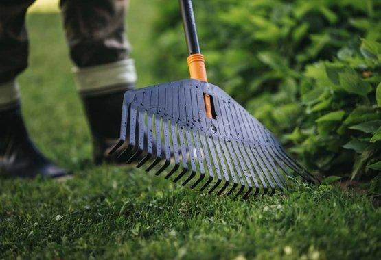 שימרו על הגינה שלכם נקייה